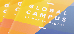 INTEGRATED TEACHING OF REGIONAL PROTECTION OF HUMAN RIGHTS IN  EUROPE, LATIN AMERICA AND AFRICA