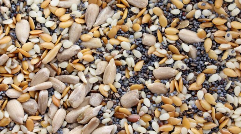 semillas-2